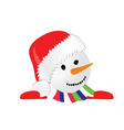 snowman in colorful vector image