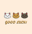 three lucky cats and text vector image vector image