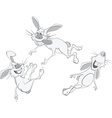 Rabbits cartoon vector image