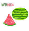 Abstract Colorful Watercolor Watermelon isolated vector image vector image