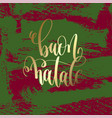buon natale - gold hand lettering on green and vector image vector image