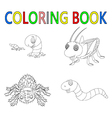coloring book with insect collection vector image