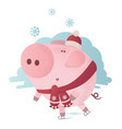 cute pig skates in a winter scarf vector image