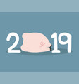 new 2019 year with pig back vector image
