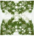 pine tree background vector image vector image