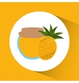 Preserved fresh fruit icon vector image