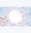 round paper with cherry blossom flowers vector image