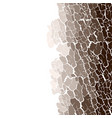 seamless pattern of bark texture wood vector image vector image