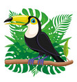 toucan bird sitting on a branch vector image vector image