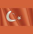 vintage flag turkey close-up background vector image vector image