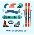 Winter sports design elements set Winter sports vector image