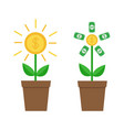 growing paper money tree shining coin with dollar vector image vector image