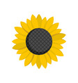 sunflower seed icon flat style vector image vector image