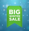 Winter sale big green ticket vector image