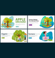 apples pears plums picking flat set vector image vector image