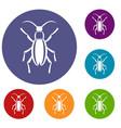 beetle bug icons set vector image vector image