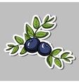 BlueberrySticker vector image