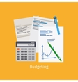 Budgeting cartoon style vector image vector image