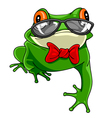Cartoon green frog with a bow tie in glasses vector image