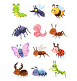 cartoon insects cute grasshopper and ladybug vector image