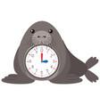 cartoon seal clock template vector image vector image