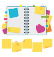 color open notebook on rings with clean sheets a vector image