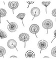 dandelion seamless pattern dandelions grass vector image vector image