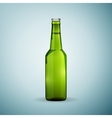 Glass beer green bottle icon isolated on blue vector image vector image