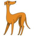 greyhound dog minimalist image vector image