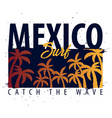mexico surfing graphic with palms t-shirt design vector image