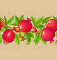 pomegranate branches pattern vector image