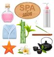 SPA Icons Set 3 vector image