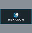 wy hexagon logo design inspiration vector image vector image