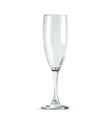 Champagne glass empty classic form isolat vector image