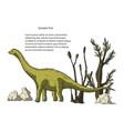diplodocus dinosaur vector image vector image