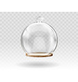 glass christmas balls hanging dome for decoration vector image