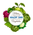 Healthy vegetable food cabbages poster vector image