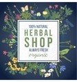 Herbal shop emblem with herbs and flowers vector image vector image