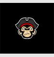 monkey pirates mascot vector image