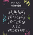 script font alphabet written with a brush vector image