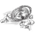 basket with mushrooms vector image