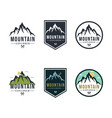 forest mountain adventure badge logo sign vector image vector image