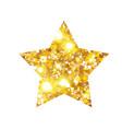 gold luxury fashion shiny star vector image vector image