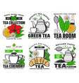 herbal green and black tea icons vector image