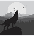 wolf howling background in grey color vector image vector image