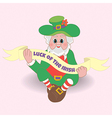 Card Luck of the Irish St Patricks day vector image vector image