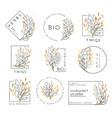 et floral design elements vector image vector image
