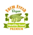 Farm fresh zucchini squash Healthy food icon vector image vector image