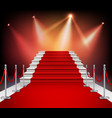 Red Carpet With Stairs vector image vector image