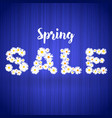 spring sale floral banner template with lights vector image